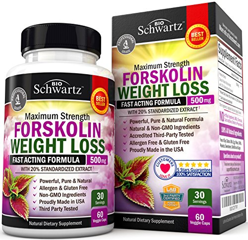 Forskolin Extract For Weight Loss Pure Forskolin Diet Pills Belly