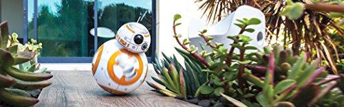 original-bb-8-sphero-no-droid-trainer