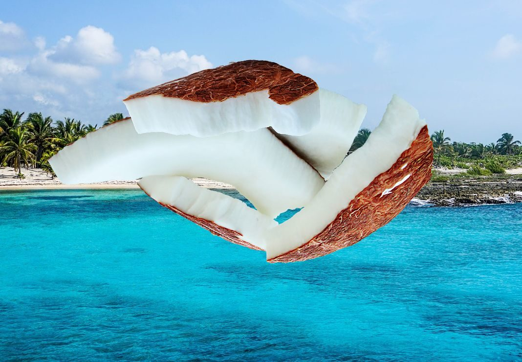 beneficios-del-coco-articulo-de-atlanta-latinos