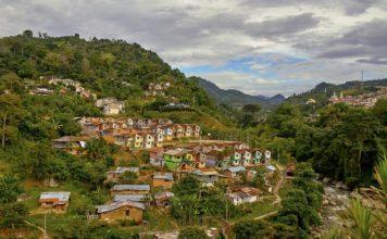 trivago-Jardin-Colombia-Pedro Szekely-atlanta-latinos-magazine