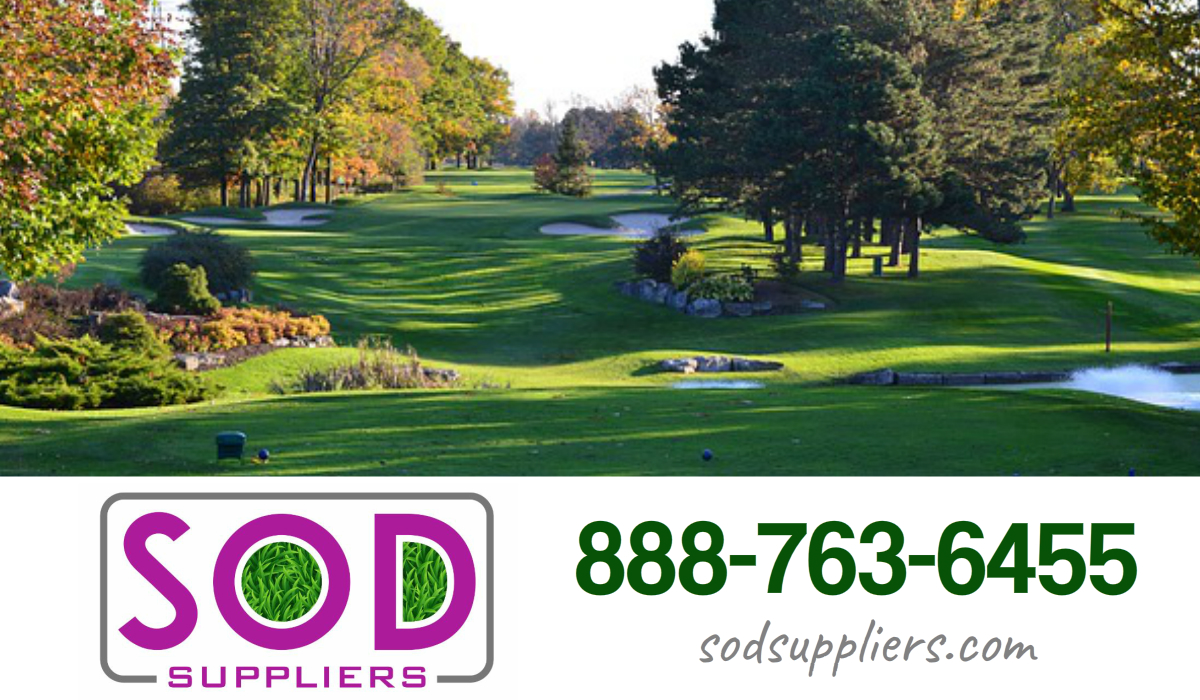 atlanta-turf-grass-suppliers